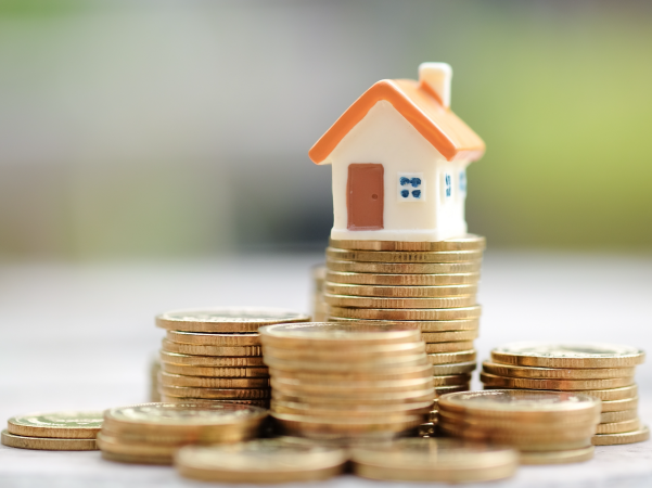 The Economy and the Property Market in 2019